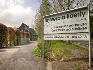 Hondenpension Antverpia Liberty