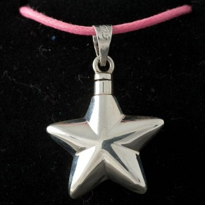 Zilveren ashanger stervorm